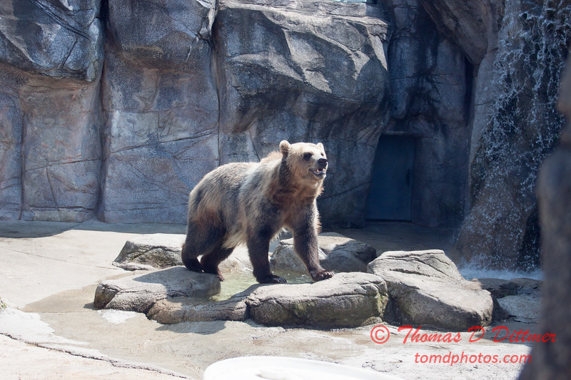 Washington Park Zoo - Michigan City Indiana - #23