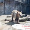 Washington Park Zoo - Michigan City Indiana - #20