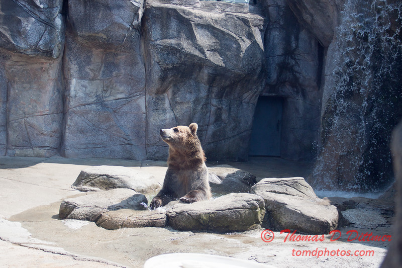 Washington Park Zoo - Michigan City Indiana - #24