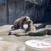Washington Park Zoo - Michigan City Indiana - #29