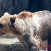Washington Park Zoo - Michigan City Indiana - #32