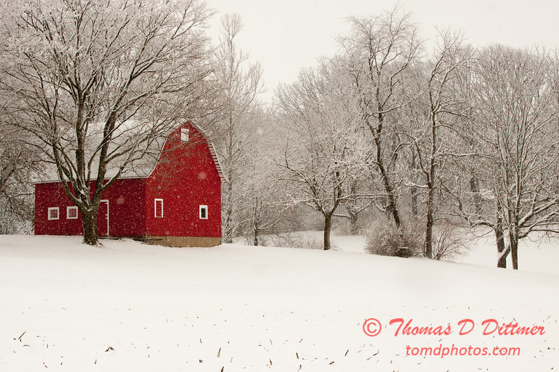 Falling snow in February - Rural Bloomington Illinois
