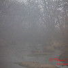 # 4 - Central Illinois stream on a foggy afternoon