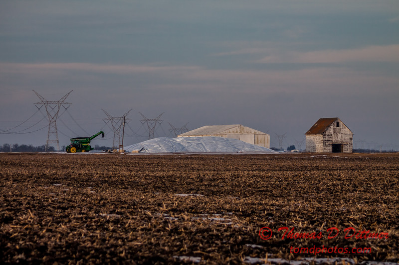 # 4 - Crop under cover in Rural McLean County Illinois