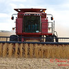 2010 - Bean Harvest - Hudson Illinois - Saturday October 2nd - 30