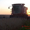 2010 - Combine harvesting soybeans at sunset - 24