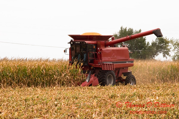 Harvest in Farm Country  4