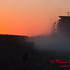 2010 - Combine harvesting soybeans at sunset - 54