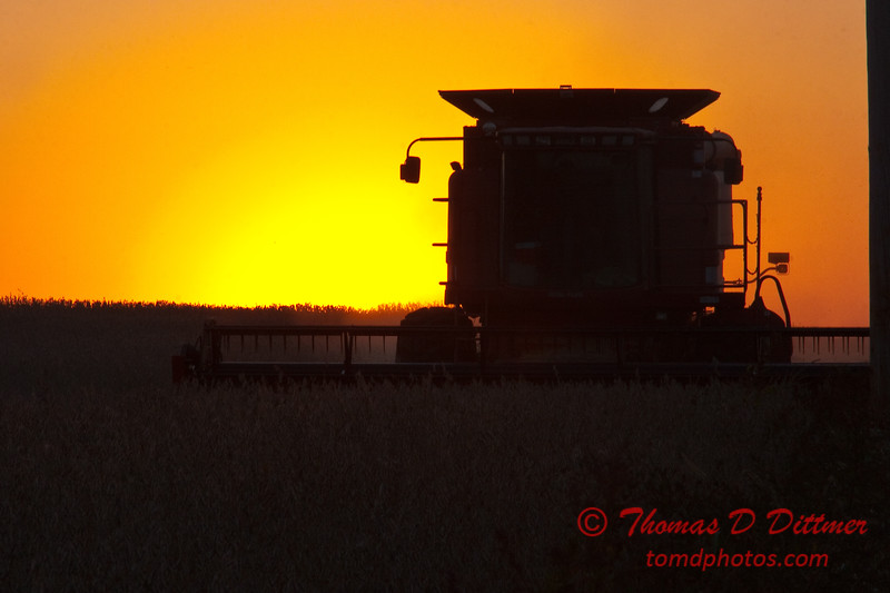 2010 - Combine harvesting soybeans at sunset - 7