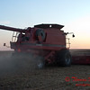 2010 - Combine harvesting soybeans at sunset - 46