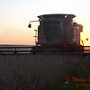 2010 - Combine harvesting soybeans at sunset - 21