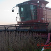 2010 - Combine harvesting soybeans at sunset - 25