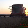 2010 - Combine harvesting soybeans at sunset - 22