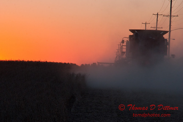2010 - Combine harvesting soybeans at sunset - 53