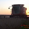 2010 - Combine harvesting soybeans at sunset - 23