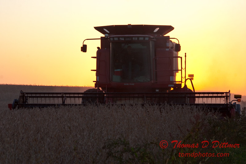 2010 - Combine harvesting soybeans at sunset - 17