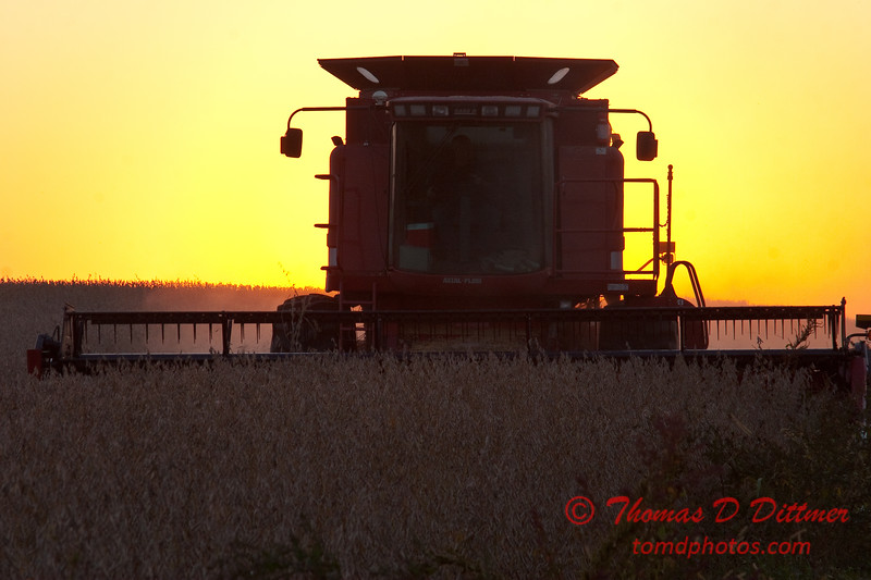 2010 - Combine harvesting soybeans at sunset - 12