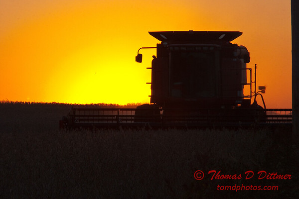 2010 - Combine harvesting soybeans at sunset - 6