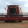 2010 - Bean Harvest - Hudson Illinois - Saturday October 2nd - 31