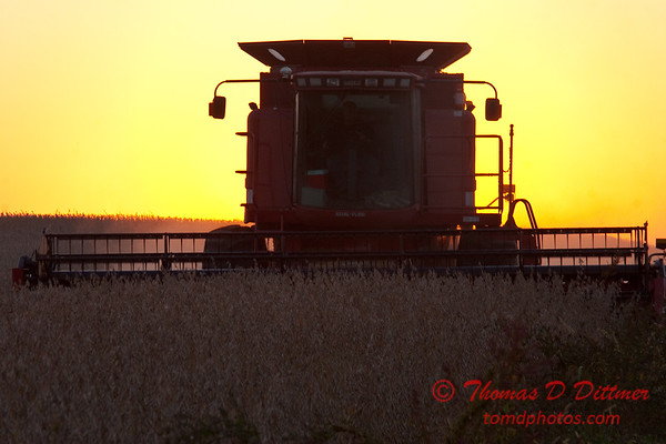2010 - Combine harvesting soybeans at sunset - 14