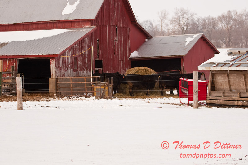 2010 - 12/18 - Farm Buildings - 17