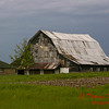 Farm Buildings - US 150 - Congerville Illinois - May 15 2009 - 8