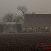 # 7 - Farm buildings in Central Illinois on a foggy afternoon