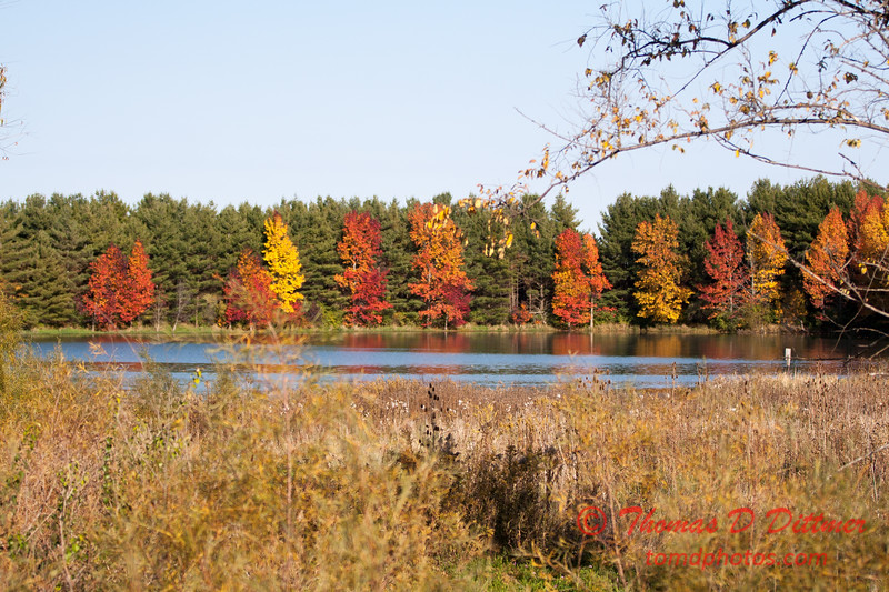 3 - 2014 Autumn colors on display at Evergreen Lake - Hudson Illinois