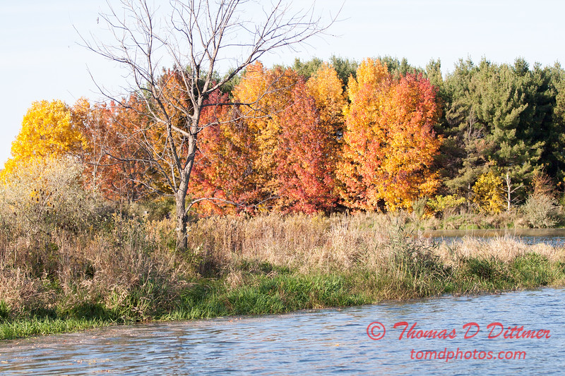 26 - 2014 Autumn colors on display at Evergreen Lake - Hudson Illinois
