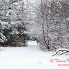 21 - Wooded areas surrounding Lake Evergreen on a snowy day - Northern McLean County Illinois - Monday December 1st 2008