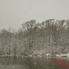 # 9 - Snow falling at Evergreen Lake Hudson Illinois