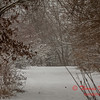 # 19 - Snow falling at Evergreen Lake Hudson Illinois