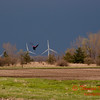 2010 - Wind Mill Farm North of Streator Illinois - April 4th - 7