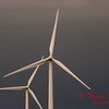 2010 - Wind Mill Farm North of Streator Illinois - April 4th - 6