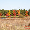 15 - 2014 Autumn colors on display at Evergreen Lake - Hudson Illinois