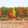 16 - 2014 Autumn colors on display at Evergreen Lake - Hudson Illinois