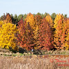 1 - 2014 Autumn colors on display at Evergreen Lake - Hudson Illinois