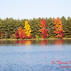 25 - 2014 Autumn colors on display at Evergreen Lake - Hudson Illinois