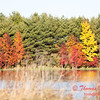 19 - 2014 Autumn colors on display at Evergreen Lake - Hudson Illinois