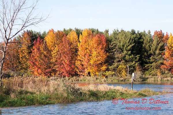 23 - 2014 Autumn colors on display at Evergreen Lake - Hudson Illinois