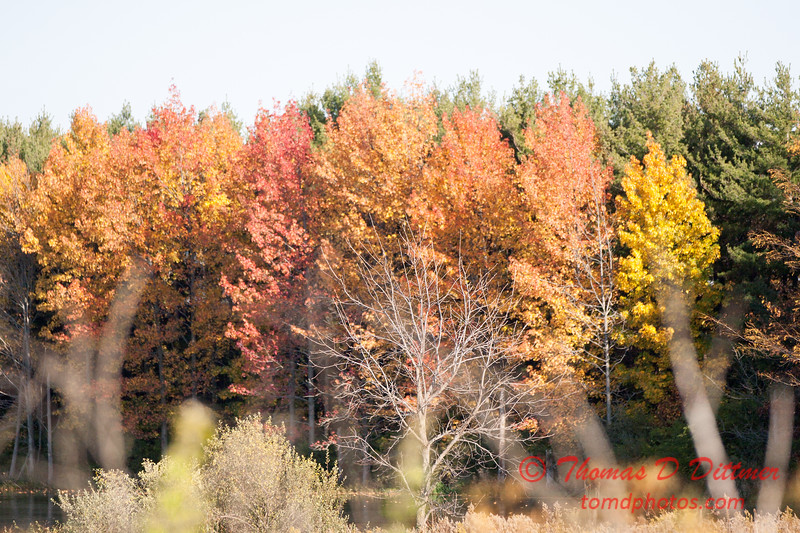 7 - 2014 Autumn colors on display at Evergreen Lake - Hudson Illinois
