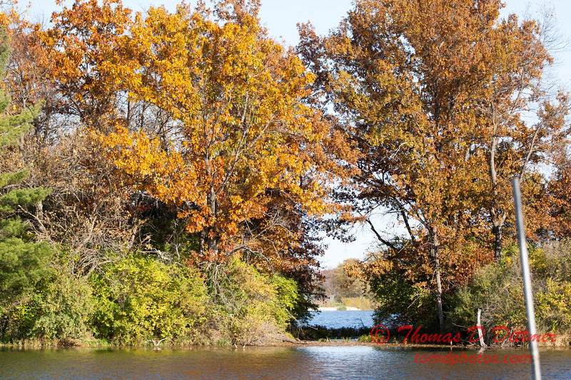 20 - 2014 Autumn colors on display at Evergreen Lake - Hudson Illinois