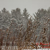 # 20 - Snow falling at Evergreen Lake Hudson Illinois