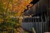 Covered Bridge - Albany, NH