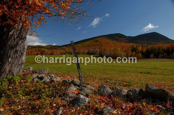 fall pasture - Jackson, NH