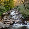 Alum Cave Trail Creek