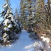 Weaselhead Winter