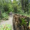 Weaselhead Pathway