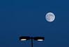 Sininen Kuu