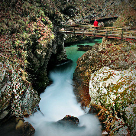 Vintgar Gorge near Bled in winter